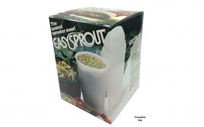 Grow your own Broccoli Sprouts